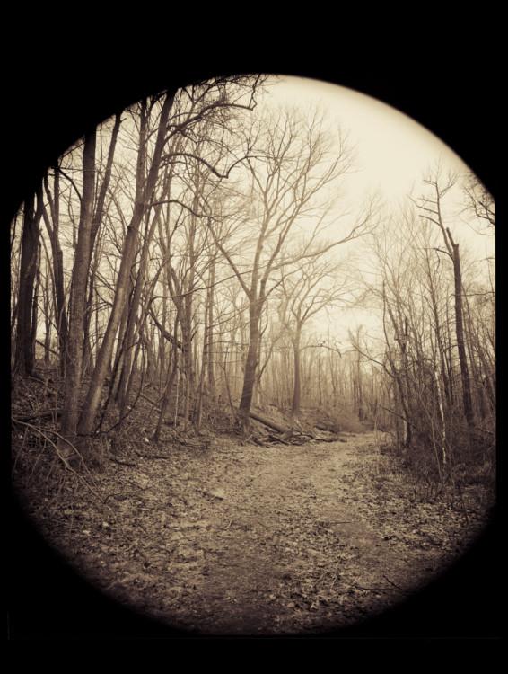 the path way copy